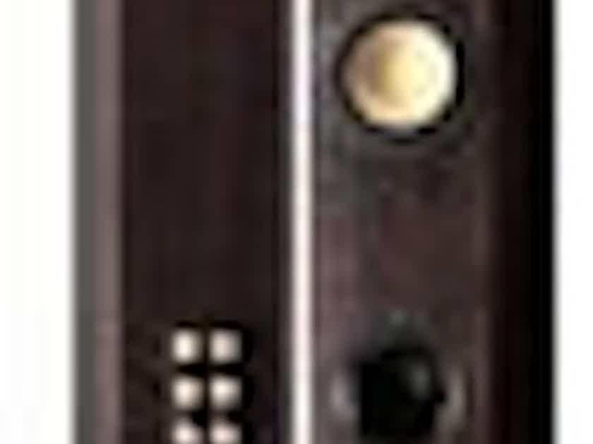 Swans Speaker Systems Diva 5.1P Speaker Pair