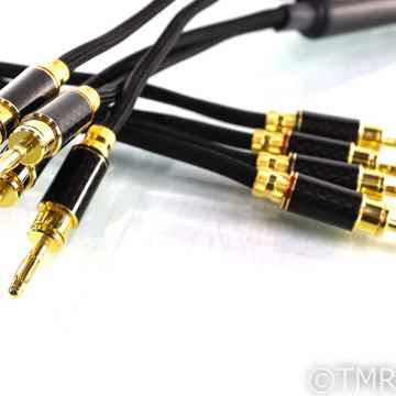 WyWyres Platinum Series Speaker Cables