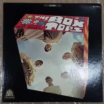 The Box Tops - The Letter / Neon Rainbow 1967 NM Vinyl ...
