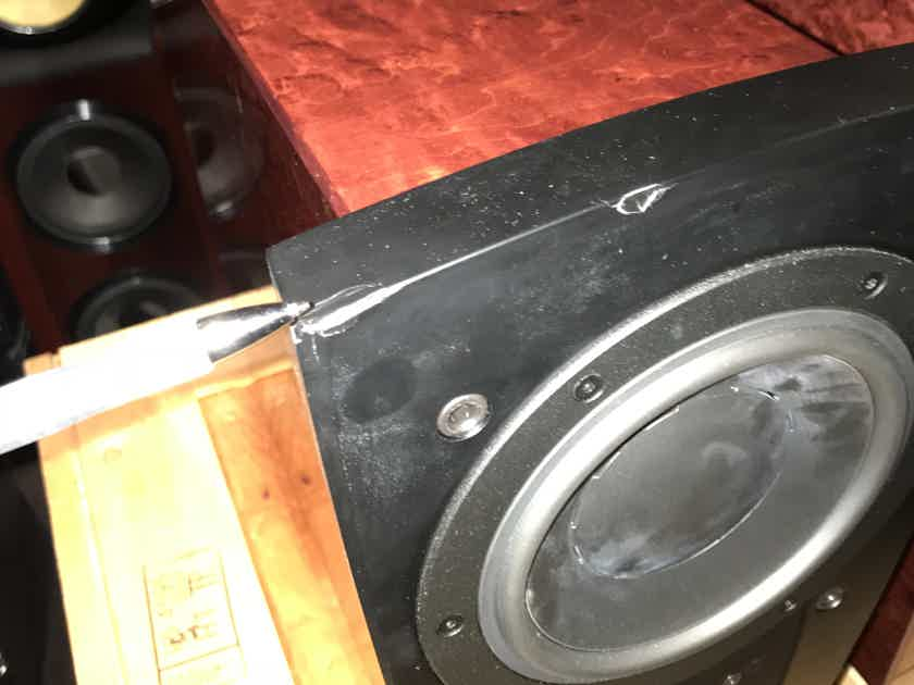 Dynaudio C1 Minor cosmetic flaw with stands