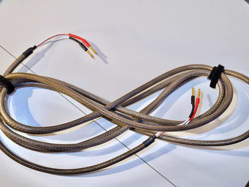 The Chord Company Epic Twin 2x5m speaker cables