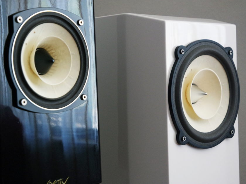 Voxativ Hagen - single driver monitor speakers  - hand made with love in Berlin