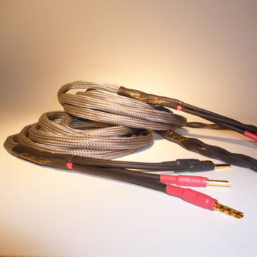 Schmitt Custom Audio Reference 100 4x12 AWG