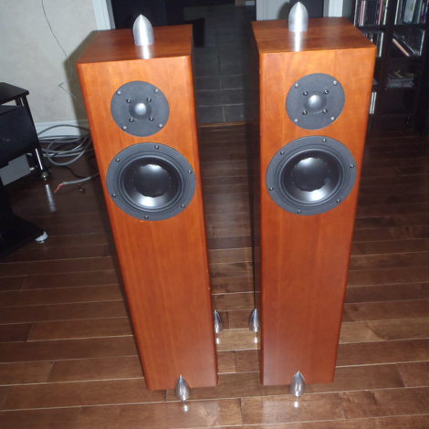 Totem Acoustic Forest